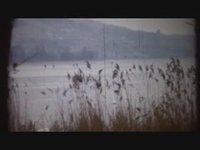 Début mars, le lac de Morat  est gelé!